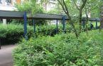 229_01_Bornheide2011